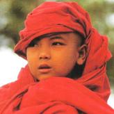 Il piccolo monaco