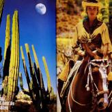 Baja California Viva Mexiko